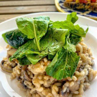 Garlic Mushroom & Arugula Risotto